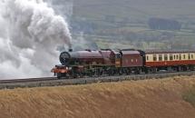 Lizzie_Transport_Robin500wm_RVS
